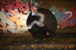 Ruhrgold 11 - Graffitiwand - Dortmund