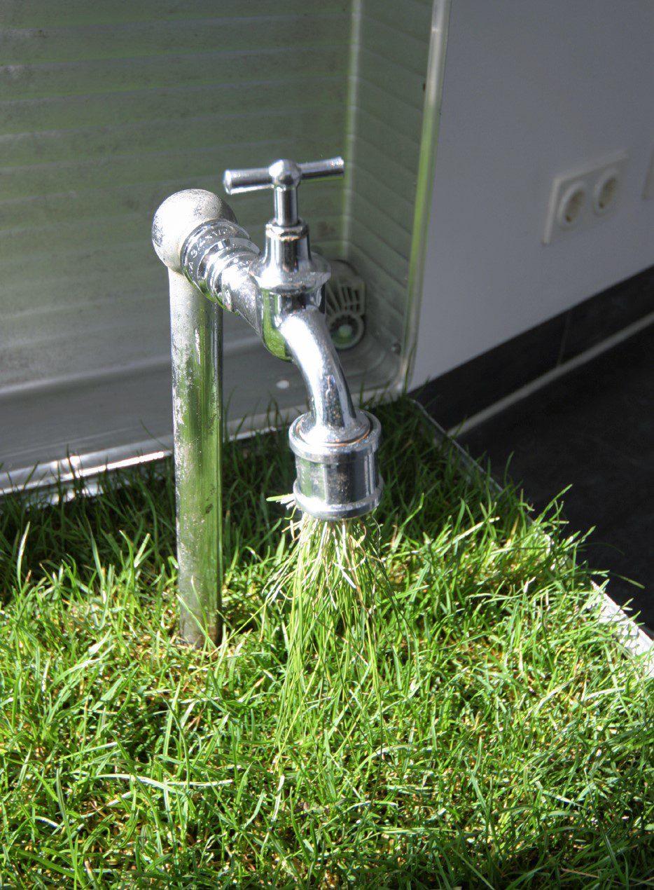 Springshower - Installation mit Duschköpfen und Weizengras